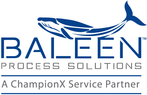 Baleen Process Solutions